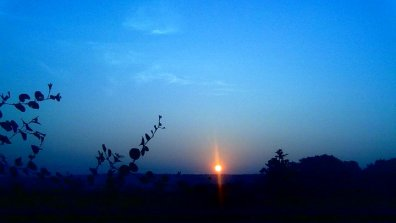 The Sunrise. Photo by Achal R Chauhan.