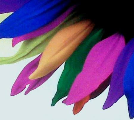 Colours And the Dreams © Neeraj Bhushan for Greater Voice [ neerajbhushan.com ]